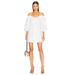 NEW Alexis Dayanne dress